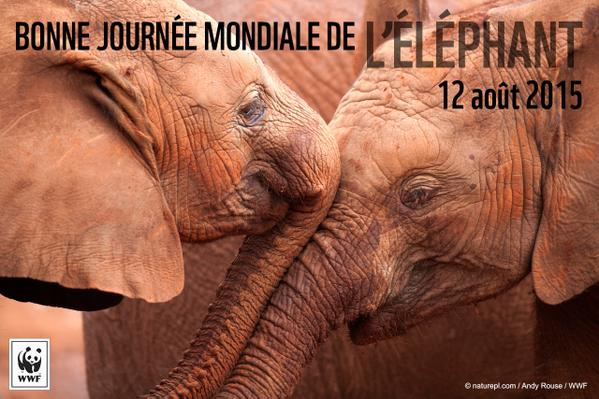 Journée internationale de l'éléphant 2015