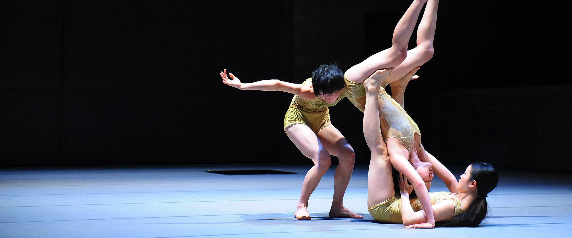Banniere de Dansu, la nouvelle danse japonaise